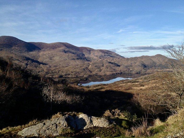 Beautiful Landscape around Killarney National Park