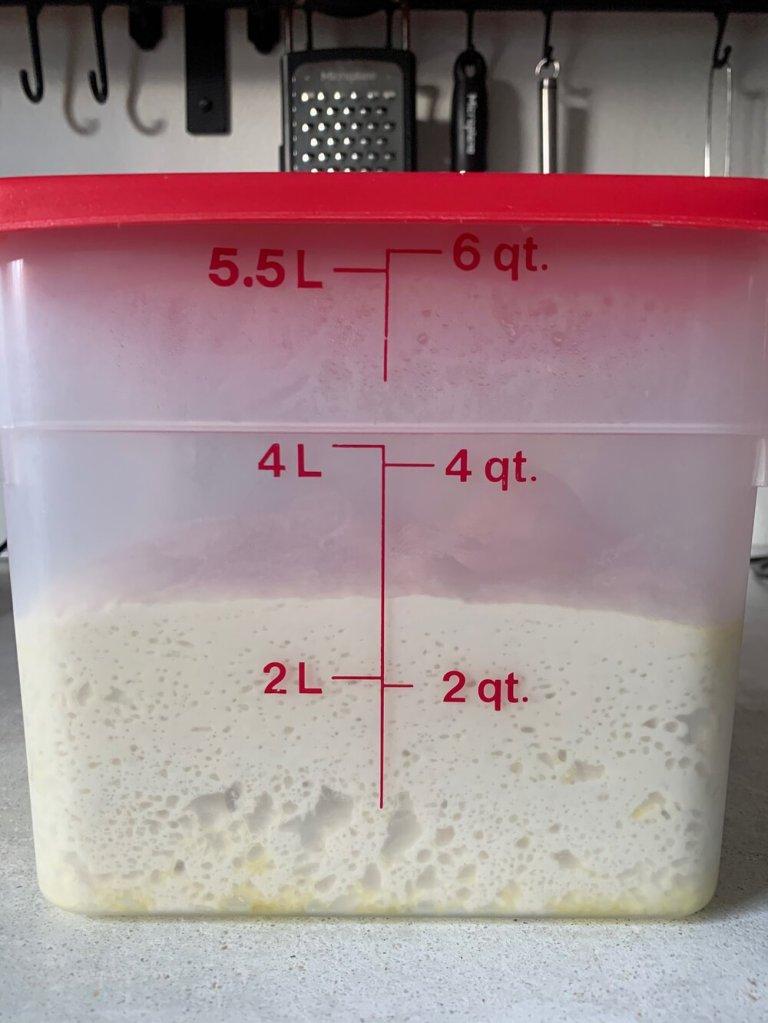 Focaccia dough after an overnight rise