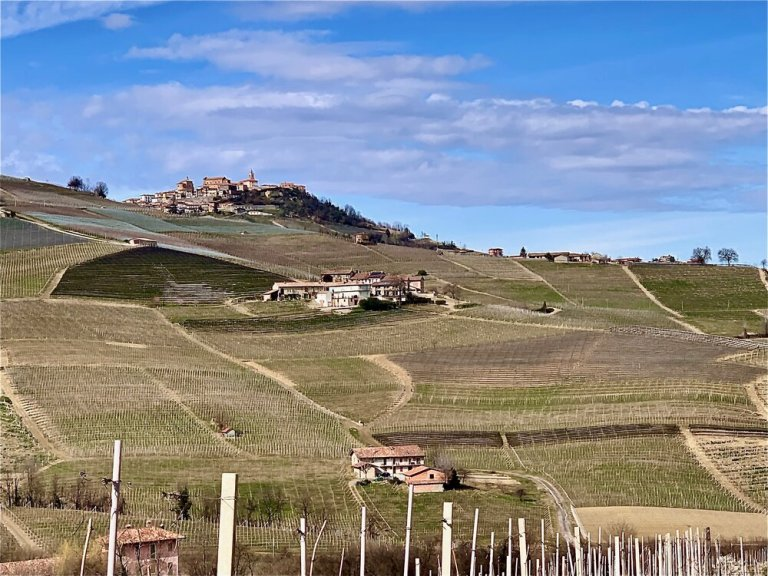 Hiking the vineyards in Barolo in March just before the pandemic forced us home