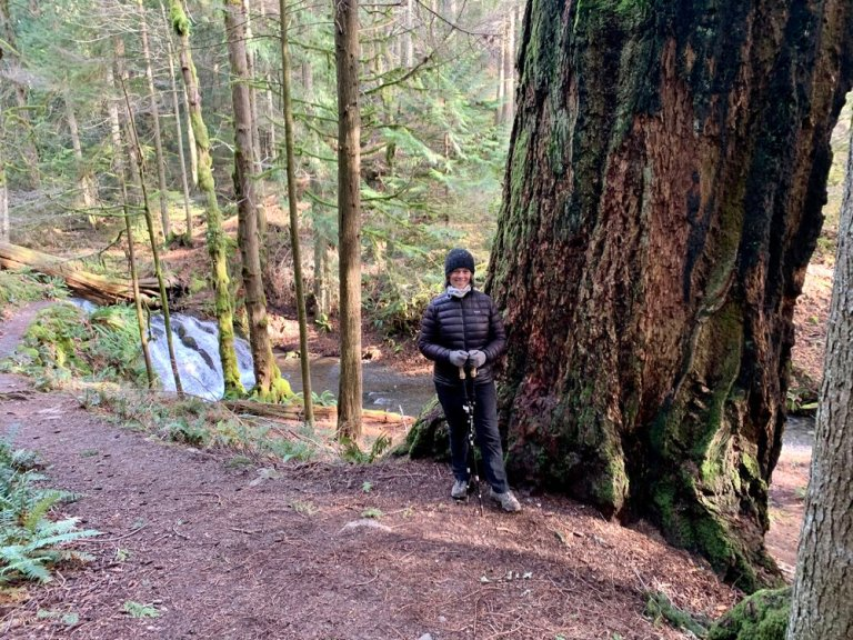 Betsy by one of the enormous Douglas Fir