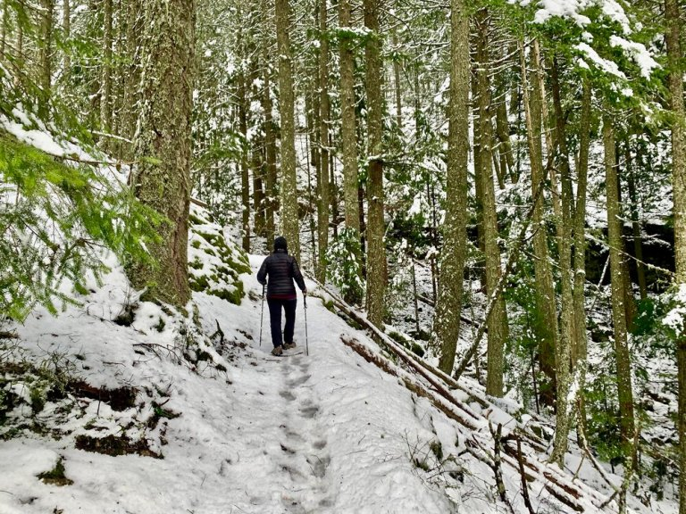 Trekking poles help with climbing hills and balance in slippery conditions.