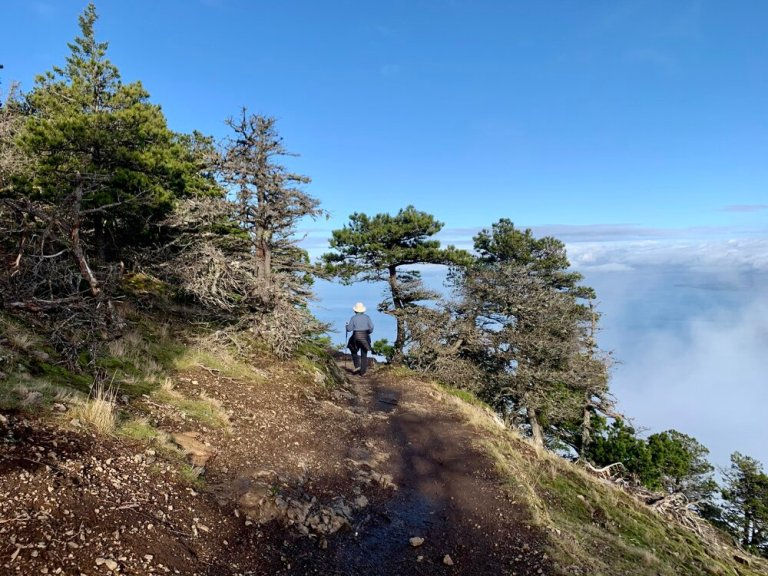 Hiking Mount Constitution Trail, Moran State Park