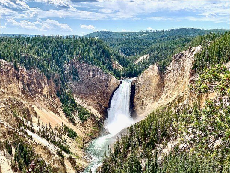 Grand Canyon of the Yellowstone. We hiked over 10 miles this day and drank lots of water!