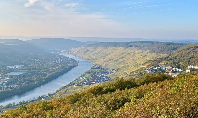 This is why we hike! The incredibly steep vineyards of the Mosel Valley, Germany