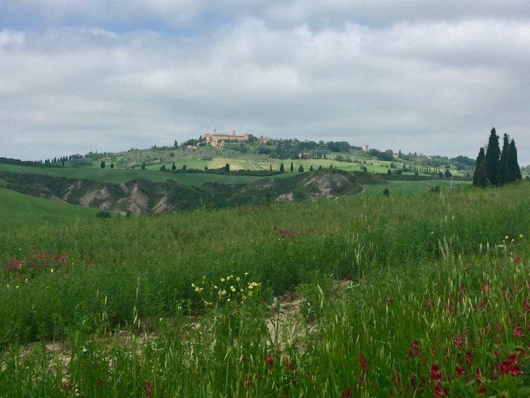 tuscan-hills-near-pienza-italy.jpeg