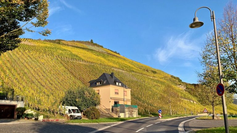 We recently traveled to the Mosel Valley in Germany. Where do you want to go?